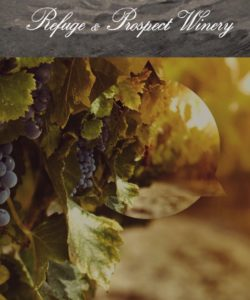 refuge and prospect winery